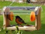 images of Bird Feeders Contemporary