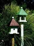 images of Bird Feeder Smaller Birds