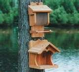 Bird Feeder Affiliates pictures