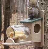 photos of Bird Feeders Milk Jugs