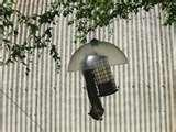 images of Bird Feeder Shield