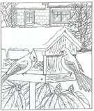 images of Bird Feeder Coloring Page