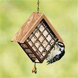 photos of Bird Feeders Artline