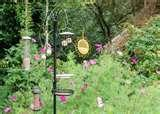 images of Rhs Bird Feeders