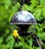 Bird Feeders Dc images