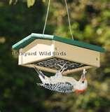 Bird Feeder Hummingbird Down photos