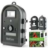 pictures of Bird Feeders Cameras