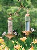 Bird Feeders For Apartments photos