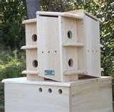 images of Bird Feeders For Apartments
