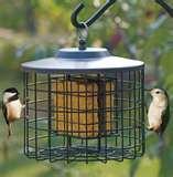 Bird Feeder Suet Holder images