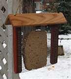 Bird Feeder Suet Holder photos