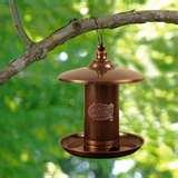 Bird Feeder Silver Charm