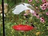 Ceramic Bird Feeder Cups