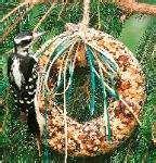 images of Bird Feeder Wreath Suet