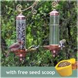 images of Bird Feeders Sip