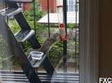pictures of Fire Escape Bird Feeder