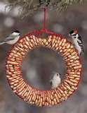 Bird Feeder Wreath Suet pictures