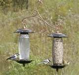 pictures of Bird Feeders Sip