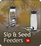 Bird Feeders Sip pictures