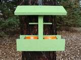 pictures of Bird Feeder Of Jelly