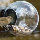 Plastic Bird Feeder Cups pictures