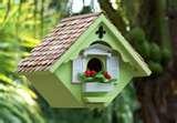 images of Bird Feeders Unique Design
