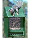 images of Squirrel Proof Bird Feeders Heritage Farms
