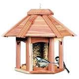Bird Feeder Do Birds Like Best images