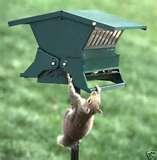 Squirrel Proof Bird Feeders Heritage Farms pictures