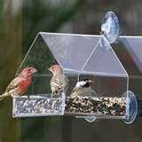 Bird Feeders Info pictures