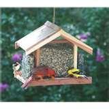 images of Bird Feeders Beginners