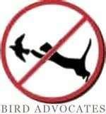 Bird Feeders Phoenix Area images