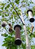 photos of Bird Feeders Affiliate Program