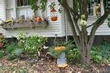 images of Bird Feeders Affiliate Program