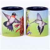 images of Bird Feeders Phoenix Area