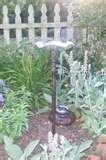 pictures of Bird Feeder Catalog
