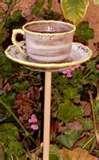 Bird Feeder Teacup photos