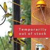 photos of Bird Feeder Nyjer Thistle