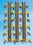 Bird Feeder Nyjer Thistle