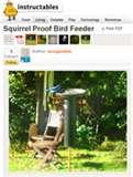 pictures of Bird Feeders Diagrams