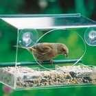 images of Window Bird Feeder Amazon