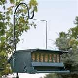 photos of Bird Feeders Squirrel Free