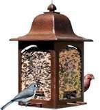 Bird Feeder Icon pictures