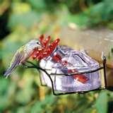 Bird Feeder Gift Set photos