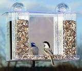Bird Feeders Suction