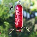 Bird Feeder Gift Set
