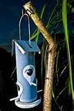 Bird Feeders With Poles pictures