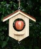 Bird Feeder Options photos