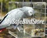 pictures of Bird Feeder Icon