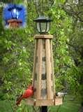 images of Bird Feeder With Solar Light